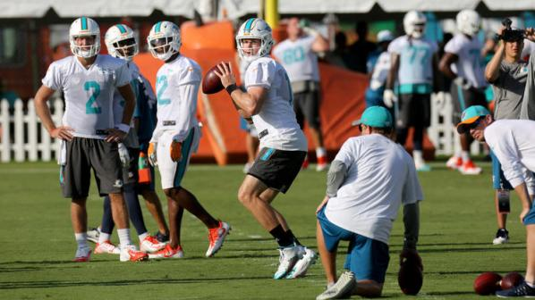 sfl-miami-dolphins-open-training-camp-pictures-076.jpg